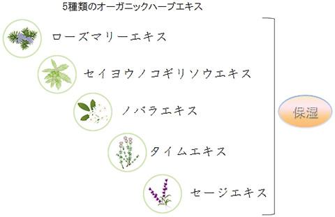 OGクイックカラーの5種類のオーガニックハーブエキス